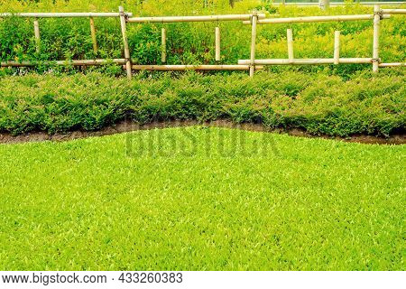 Flowerbeds With Green Grass In The Garden, Fence Made Of Bamboo, Garden With A Freshly Mowed Lawn, F