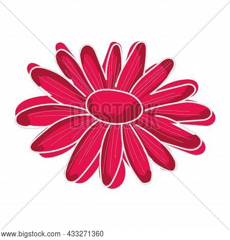 Sketch Of A Pink Daisy Flower Vector Illustration