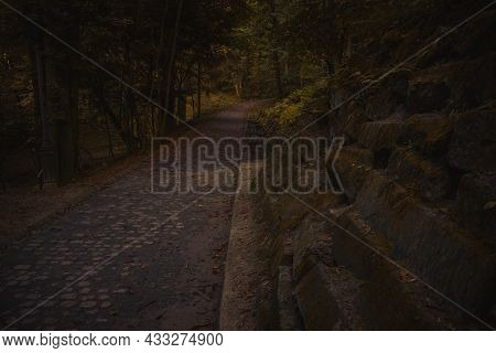 Dark Moody Autumn Season Enchanted Forest With Lonely Trail And Old Stone Ruined Wall Of Ancient Cas