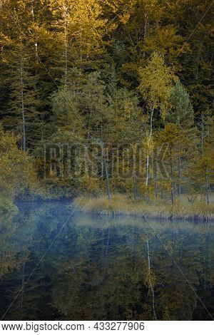 Majestic Autumnal Morning In Idyllic Forest With Fog Above Smooth Pond Water Surface Vertical Photog