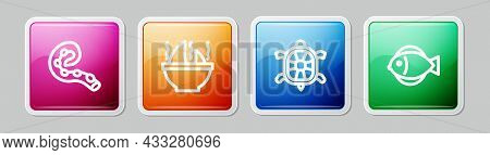 Set Line Octopus Of Tentacle, Shark Fin Soup, Turtle And Fish. Colorful Square Button. Vector