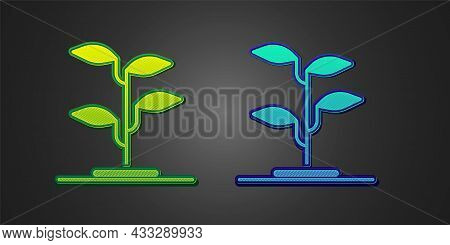 Green And Blue Sprout Icon Isolated On Black Background. Seed And Seedling. Leaves Sign. Leaf Nature