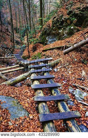 wooden steps in gorge in autumn mountain forest. Take it in Slovakia Tatra mountains
