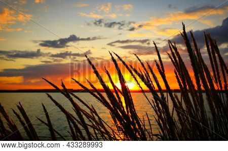 Landscape with view of the sunset on the lake through the dry grass on the shore