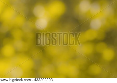 Blurred Bokeh Background Image Of Bright Yellow Foliage In Golden Autumn.