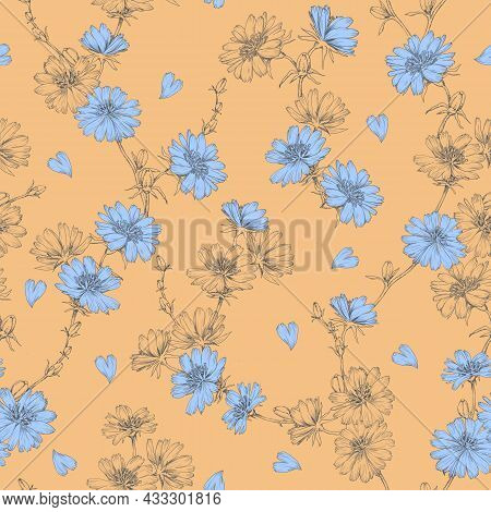 Chicory Seamless Floral Pattern. Leaves. Natural Background. Meadow Flowers. Herbal Theme. Botanical