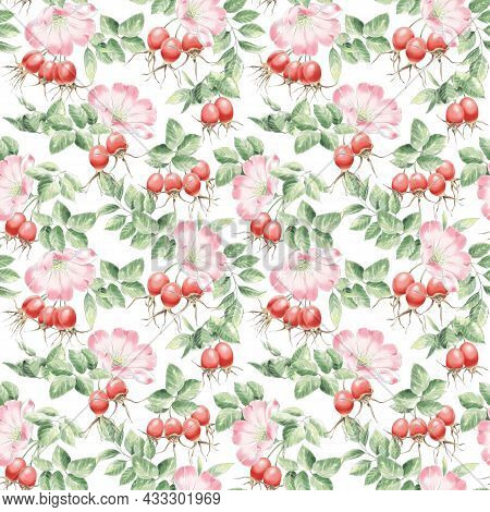 Rose Hip Seamless Pattern For The Tea Package, Rose Hip Gift Card, Floral, Berries Illustration.