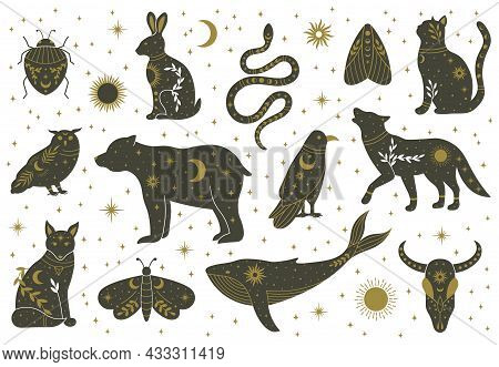 Witchcraft Magic Mystical Boho Doodle Animals And Insects. Magical Cat, Fox, Wolf, Owl, Whale Decora