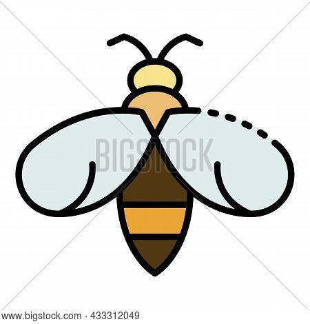 Flying Wasp Icon. Outline Flying Wasp Vector Icon Color Flat Isolated