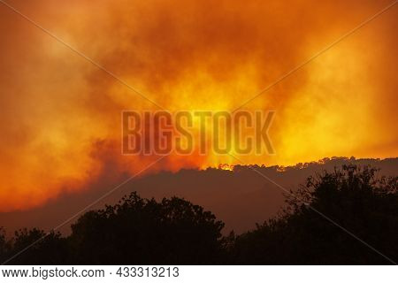 Forest Wildfire At Night From A Distance, With Silhouettes Of Trees Against Dramatic Red Sky And Hea