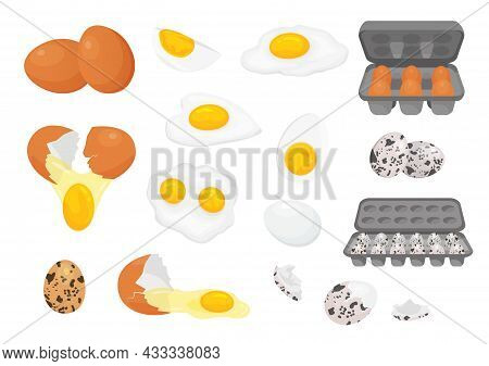 Cartoon Farm Fresh Chicken And Quail Eggs In Packages. Broken, Raw, Fried And Hard Boiled Egg Half W