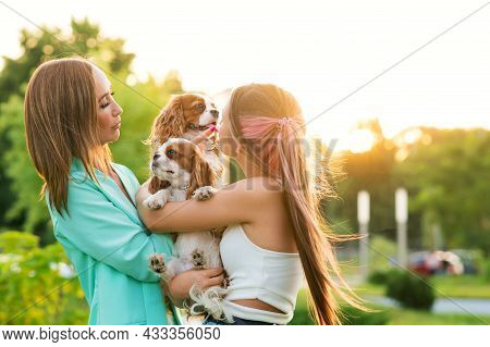 Mother And Daughter Breeders Walk In City Park With Pets. Cavalier King Charles Spaniel Puppies With