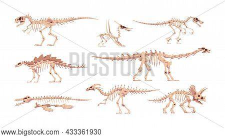 Dinosaur Skeleton. Dino Bones With Skulls. Abstract Tyrannosaurus Or Triceratops Cartoon Fossil Body