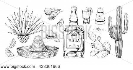 Tequila Sketch. Hand Drawn Mexican Alcohol Beverage Made Of Agave With Salt And Lemon. Engraving Alc