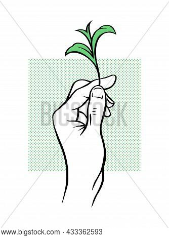 The Male Hand Carefully Holds The Green Sprout Of The Plant. Vector Illustration Hand Drawn