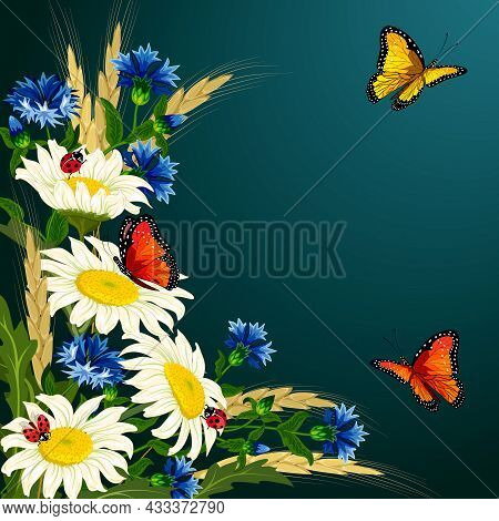 Colored Illustration With Ears And Flowers.chamomiles, Cornflowers, Ears Of Corn And Butterflies On