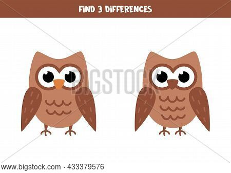 Find Three Differences Between Two Pictures Of Cute Owl.