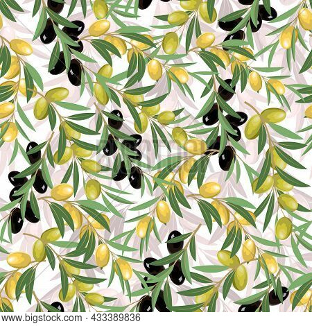 Vector Pattern With Olive Branches.branches With Olives On A White Background In A Color Vector Patt