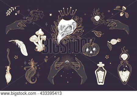 Vector Vintage Set Illustration Magic Items, For Halloween. Raven Skull In Crown, Pumpkin, Mushrooms