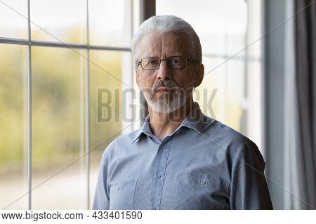 Head Shot Portrait Grey Haired Senior Confident Man Wearing Glasses