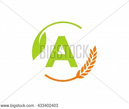 Agriculture Logo On A Letter Concept. Agriculture And Farming Logo Design. Agribusiness, Eco-farm An