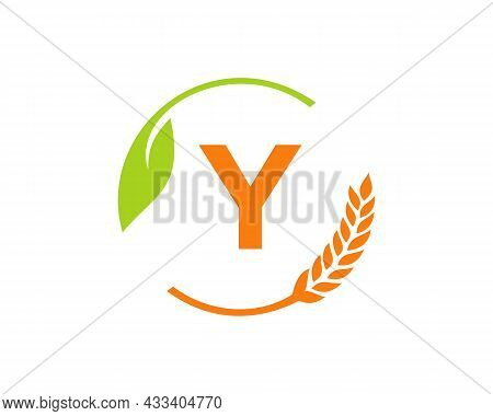 Agriculture Logo On Y Letter Concept. Agriculture And Farming Logo Design. Agribusiness, Eco-farm An