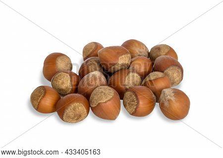 Hazelnut In Shell Isolated On White Background