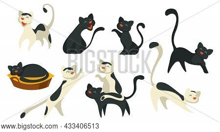 Cat Pet Sleeping And Walking, Feline Animal Vector