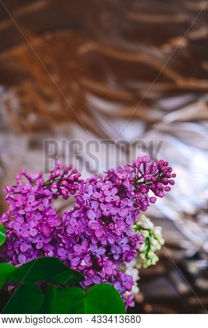 Beautiful Purple Lilacs On Glass Background Close Up