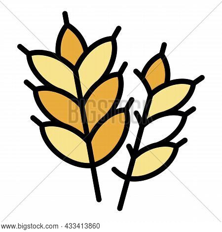 Wheat Plant Icon. Outline Wheat Plant Vector Icon Color Flat Isolated