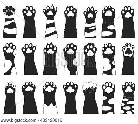 Cat Paw Vector Illustration On White Background. Isolated Black Set Icon Leg Animal. Vector Black Se