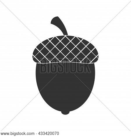 Acorn Or Oaknut Seed Flat Vector Icon For Nature Apps And Websites
