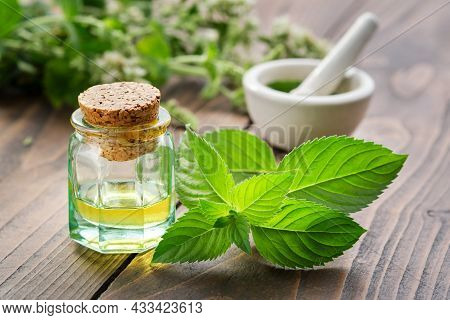 Bottle Of Mint Essential Oil And Peppermint Leaves. Mortar Of Spearmint Leaves And Blossom Mentha Pi