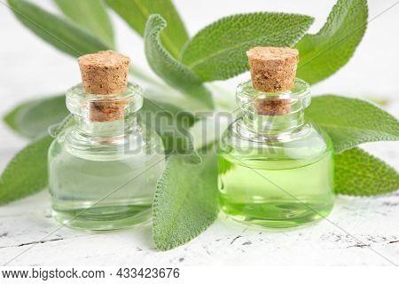 Bottles Of Sage Essential Oil, Fresh Green Leaves Of Sage Or Salvia Officinalis Medicinal Plants. Ar
