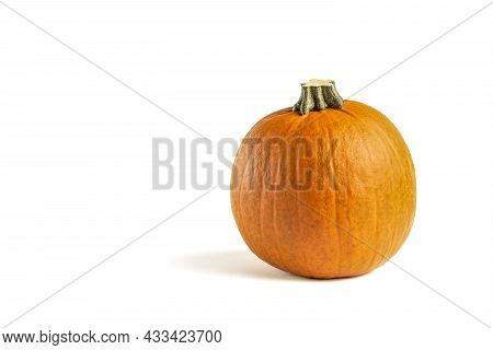 Pumpkin On A White Background. Isolated Halloween Pumpkin Isolate On White To Insert Into Your Proje