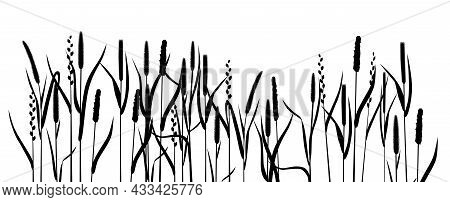 Black Silhouettes Meadow Cereal Grasses Fescue And Timothy Grass