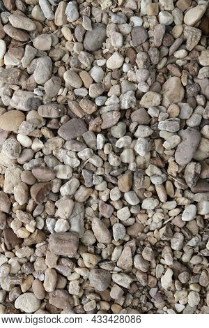 Background Of Small To Medium Size Rocks, Stones And Pebbles Along With Twigs And Dried Grass. A Var