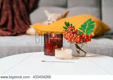 Still Life, Candle, Rowan Berry And Pumpkin In The Living Room On A Table, Home Decor In A Cozy Hous