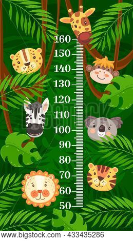 Kids Height Chart African And Tropical Cartoon Animals Growth Measure. Vector Wall Sticker Meter For