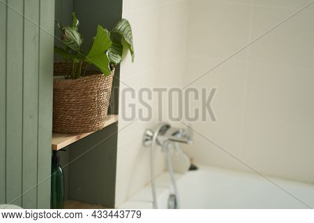 Beautiful Bathroom In A New Luxury House. There Is A Green Hosta Flower On The Shelf Near The Bath.
