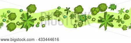 Jungle Forest Top View. Horizontal Seamless Composition. Overgrown Pretty Rainforest. Isolated On A