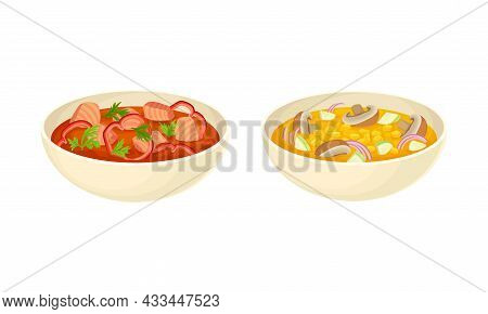 Served On Plate Dish With Vegetable Soup And Tomato Broth With Salmon Slabs Vector Set