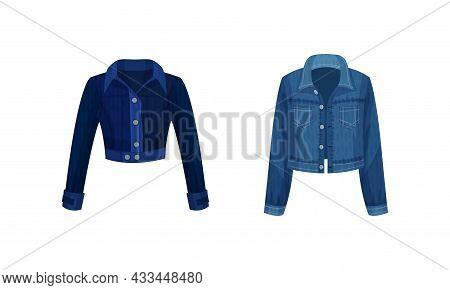 Fashion Denim Clothes Set. Trendy Female Jacket Vector Illustration