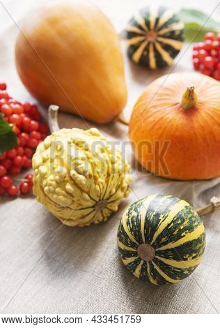 Autumn Composition,  Cozy Fall Season,  Pumpkins And Leaves On Textile Background. Symbol Of Thanksg