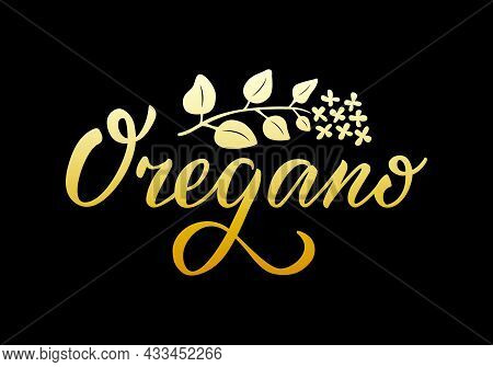 Vector Illustration Of Oregano Lettering For Packages, Product Design, Banner, Spice Shop  Price Lis
