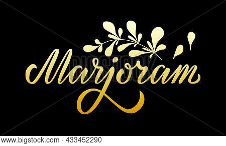 Vector Illustration Of Marjoram Lettering For Packages, Product Design, Banner, Spice Shop, Pharmacy