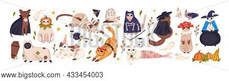 Cute Cats In Spooky Halloween Costumes Set. Funny And Creepy Feline Animals In Hats For Autumn Holid