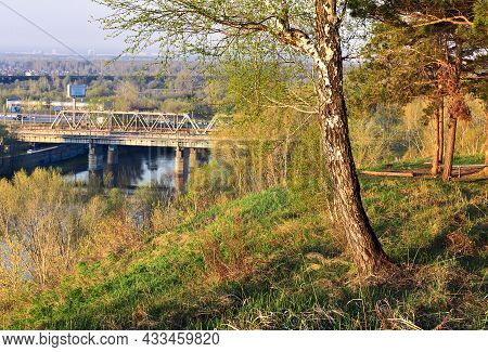 A Birch Tree With Spring Foliage On A High Steep River Bank In The Morning Light, A Railway Bridge B