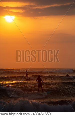 Surfing in the ocean at sunset. Bali island, Indonesia