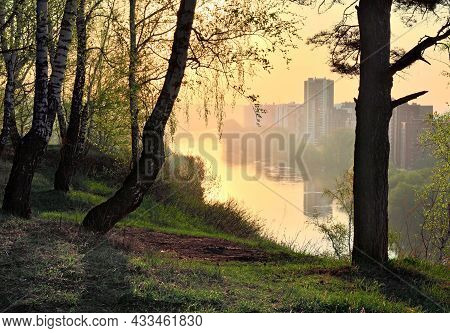 Morning Sunlight Gilds The River In Spring, Birches On The High Bank, Multi-storey Houses In The Dis